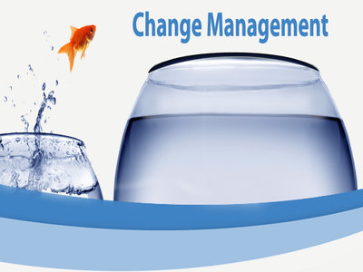 Photo of Change Management and Leadership Development Have to Mesh