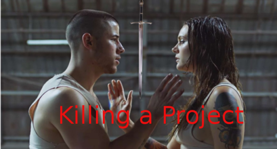Photo of When to Kill a Project?