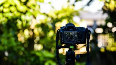 Photo of Animation or Live Video? How to Choose for  Your Next Video Marketing Strategy