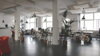 Photo of 3 Ways to Improve Working Environment for Your Employees