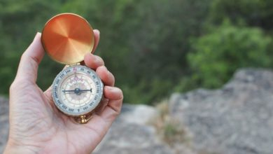 Photo of C-Suite Exec: How To Become Your Company's Moral Compass