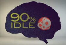 Photo of What percentage of your brain do you use? – Richard E. Cytowic