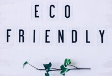 Photo of How to Ensure Your Business is Eco-Friendly